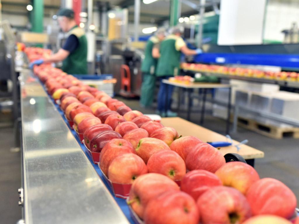 Aquatouch przetwórnie owocowo warzywne - zastosowanie